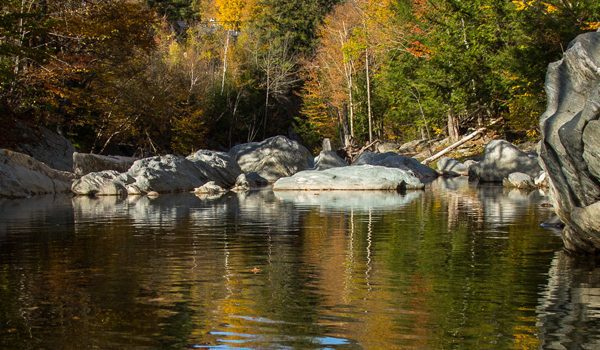 Rice Brook